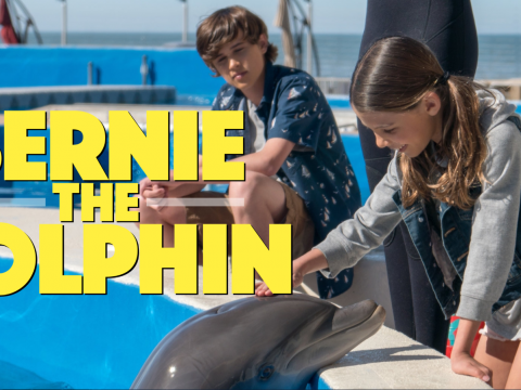 Bernie The Dolphin trailer image
